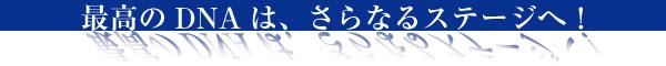 鳶-TOBI-腰袋(腰袋鳶)